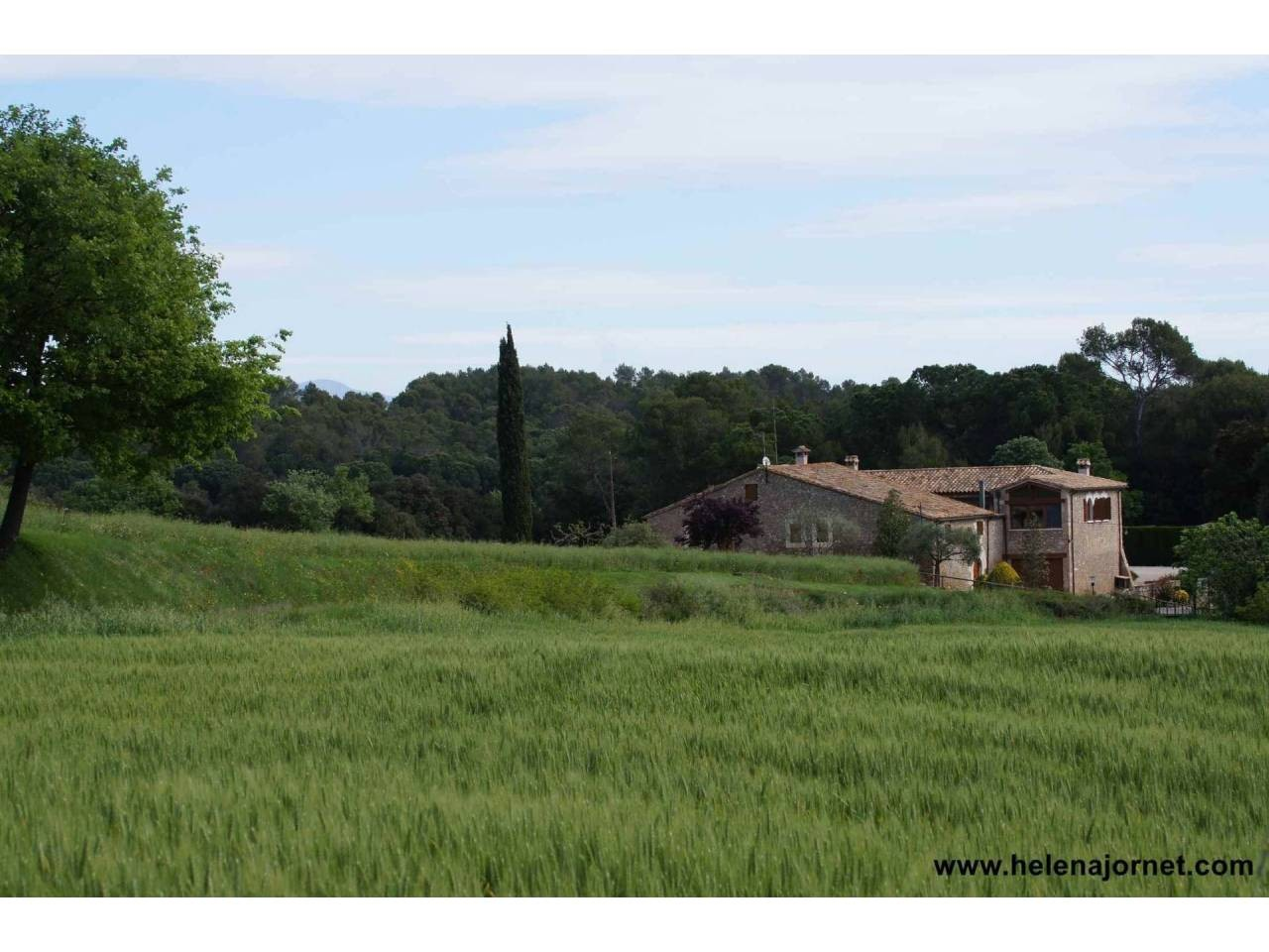 Spectacular farmhouse reformed with covered swimming pool and 37 ha of area - 1308