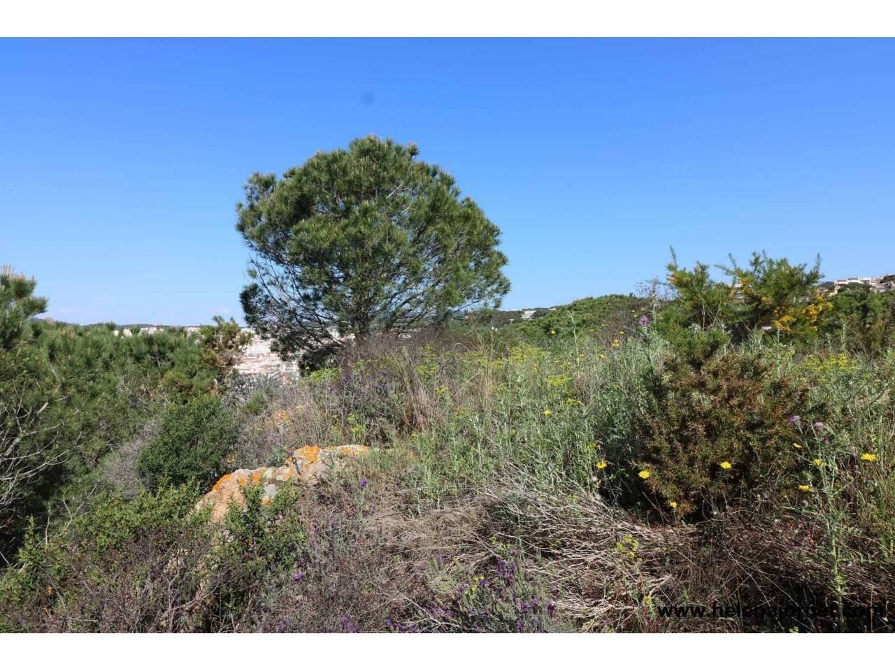 Large land lot with wonderful views and in a very good emplacement - 17