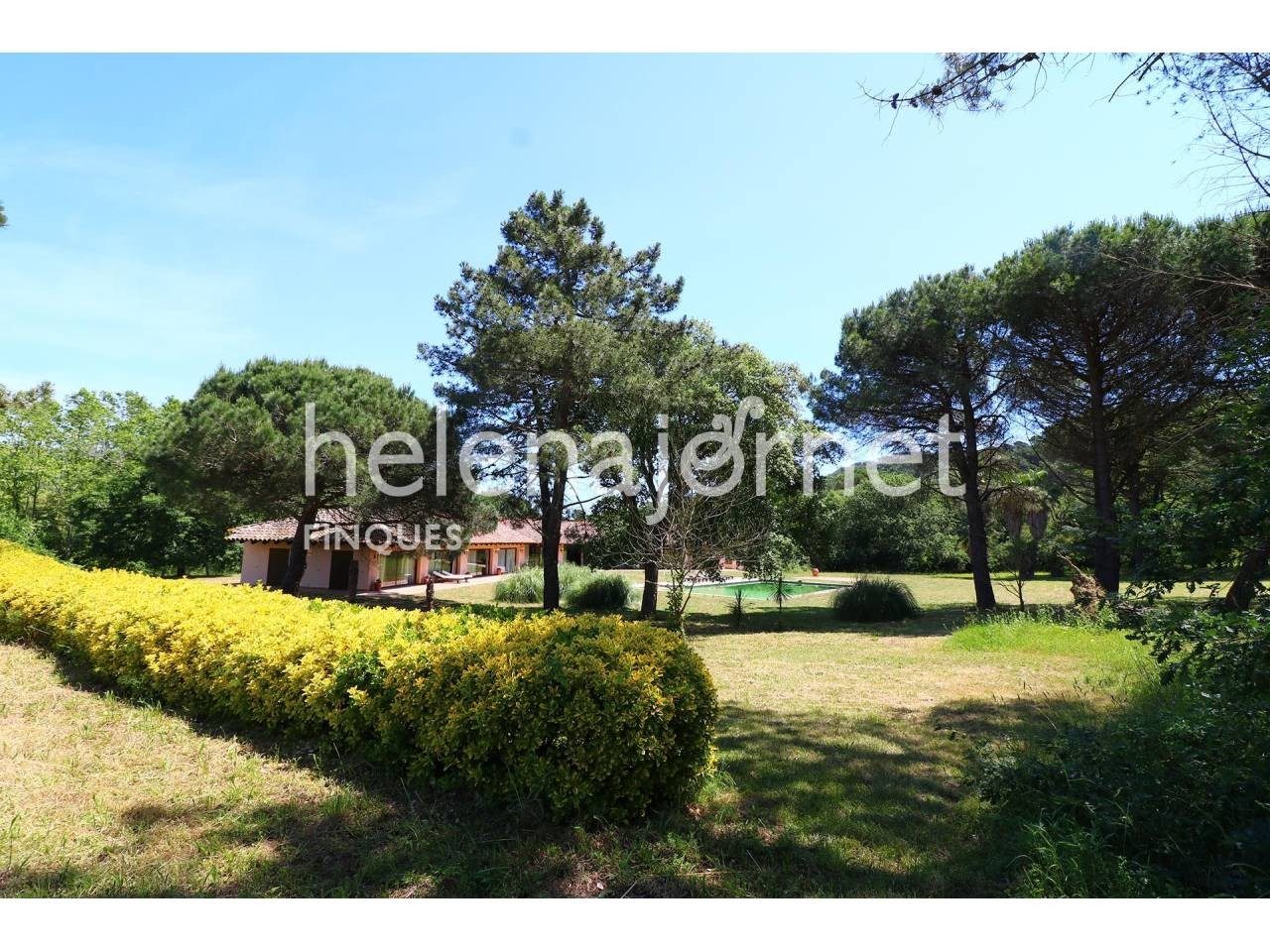 Marvellous house with pool on a 32ha plot with a country house to remodel - 3506