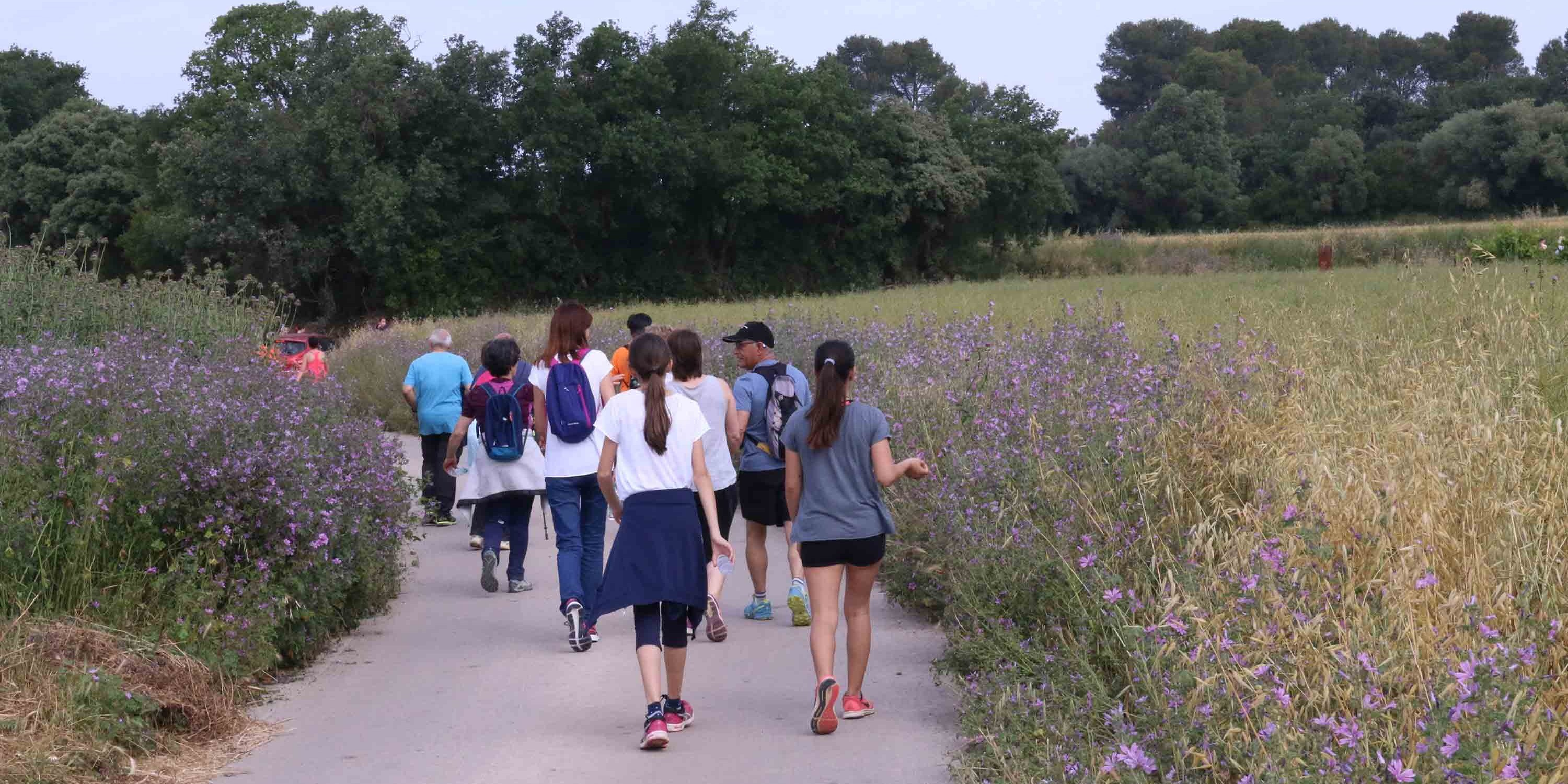 Five years walking for cancer in Parlavà